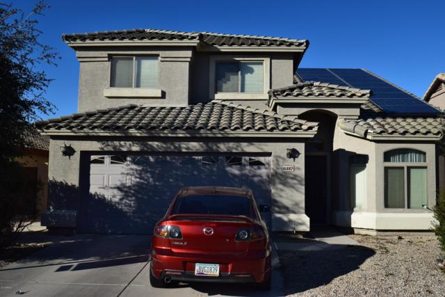 15882 W Diamond Street, Goodyear, AZ 85338 (MLS #5882727) :: The Results Group