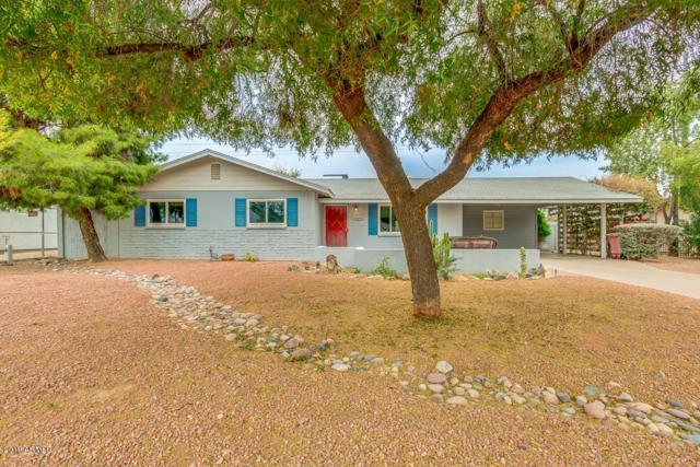 6738 E Oak Street, Scottsdale, AZ 85257 (MLS #5882755) :: Cindy & Co at My Home Group