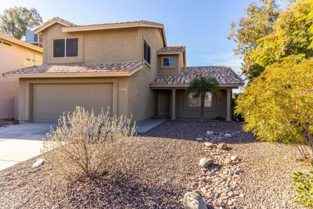 12414 S 44TH Street, Phoenix, AZ 85044 (MLS #5882777) :: Kepple Real Estate Group