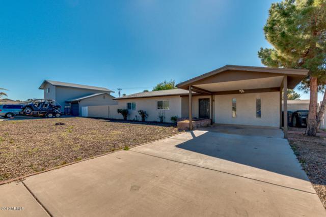 4621 E Halifax Street, Mesa, AZ 85205 (MLS #5882839) :: CC & Co. Real Estate Team