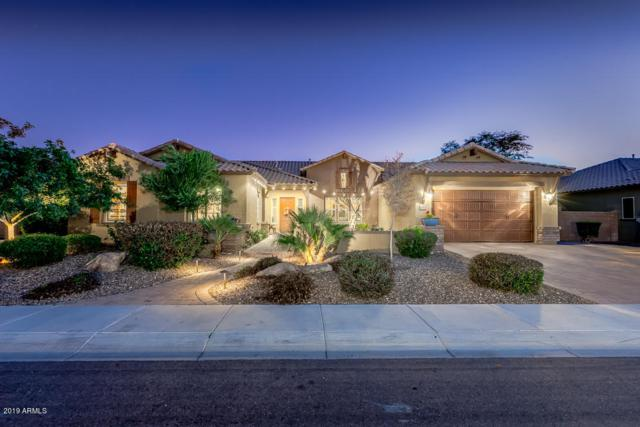 3931 E Enrose Street, Mesa, AZ 85205 (MLS #5882892) :: Yost Realty Group at RE/MAX Casa Grande