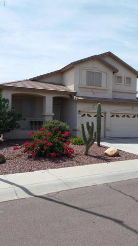 17534 N 168TH Drive, Surprise, AZ 85374 (MLS #5882930) :: RE/MAX Excalibur