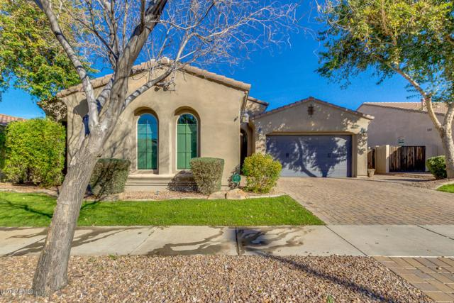 2818 E Maplewood Street, Gilbert, AZ 85297 (MLS #5882936) :: Arizona 1 Real Estate Team