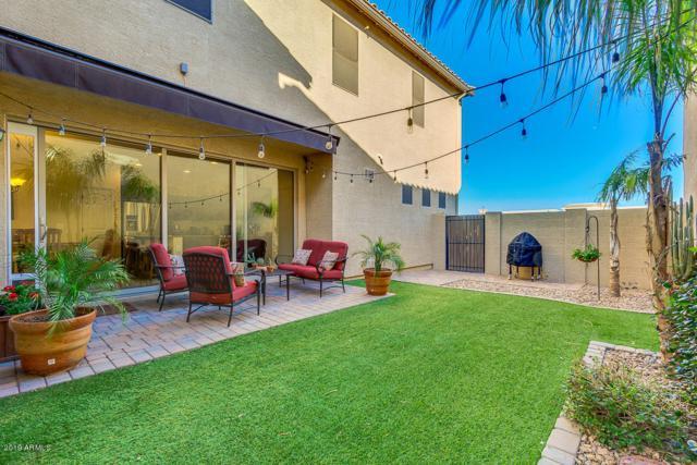 3526 S Winter Lane, Gilbert, AZ 85297 (MLS #5883004) :: Relevate | Phoenix