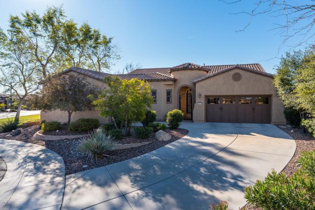 29820 N 130th Drive, Peoria, AZ 85383 (MLS #5883008) :: Cindy & Co at My Home Group