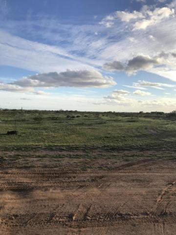 309XX W Forest Pleasant Place, Wittmann, AZ 85361 (MLS #5883024) :: Yost Realty Group at RE/MAX Casa Grande