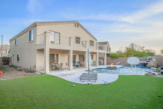 24020 N 25TH Place, Phoenix, AZ 85024 (MLS #5883061) :: Occasio Realty