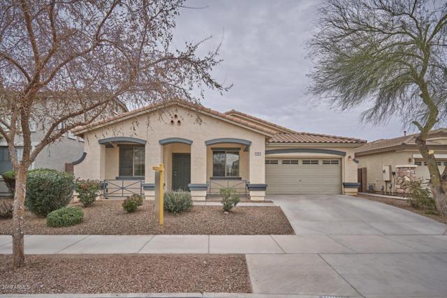 18862 E Kingbird Drive, Queen Creek, AZ 85142 (MLS #5883064) :: Yost Realty Group at RE/MAX Casa Grande