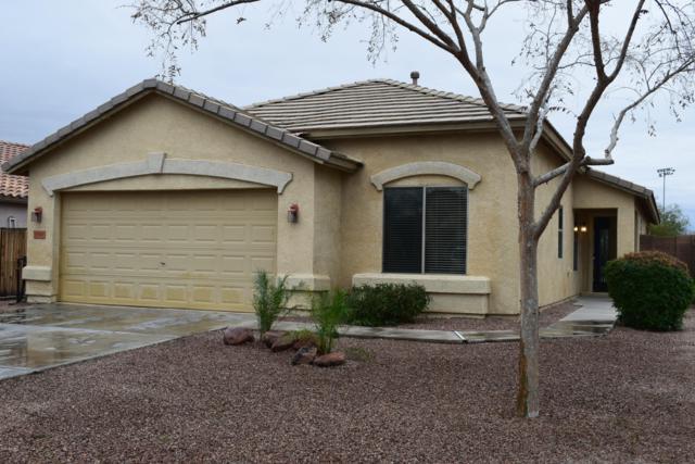 35500 N Belgian Blue Court N, San Tan Valley, AZ 85143 (MLS #5883086) :: The Bill and Cindy Flowers Team