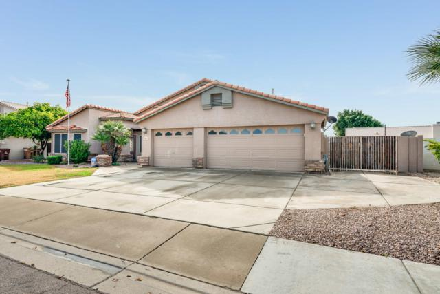 8811 W Columbine Drive, Peoria, AZ 85381 (MLS #5883092) :: Devor Real Estate Associates