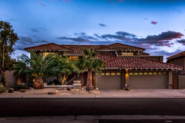 3129 E Rock Wren Road, Phoenix, AZ 85048 (MLS #5883112) :: CC & Co. Real Estate Team
