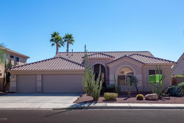 1393 W Longhorn Drive, Chandler, AZ 85286 (MLS #5883165) :: Gilbert Arizona Realty