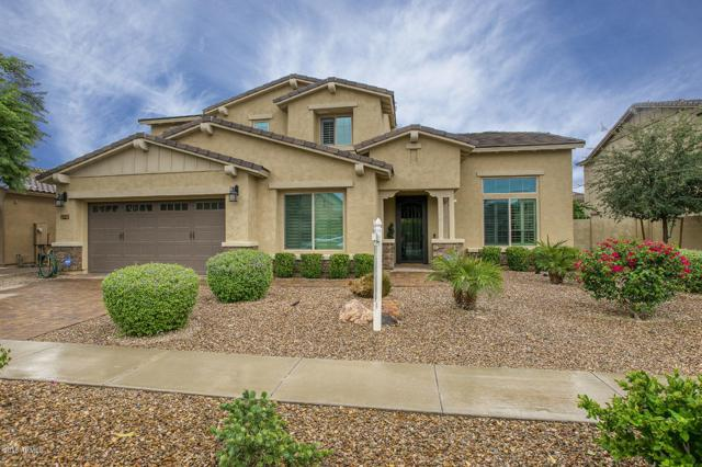 3139 E Maplewood Court, Gilbert, AZ 85297 (MLS #5883172) :: The Property Partners at eXp Realty