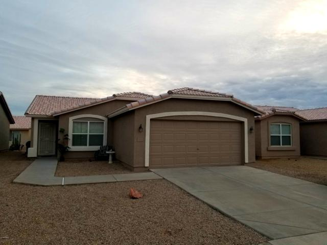 1401 E Torrey Pines Lane, Chandler, AZ 85249 (MLS #5883174) :: The W Group