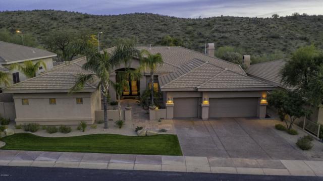 437 E Mountain Sage Drive, Phoenix, AZ 85048 (MLS #5883175) :: CC & Co. Real Estate Team