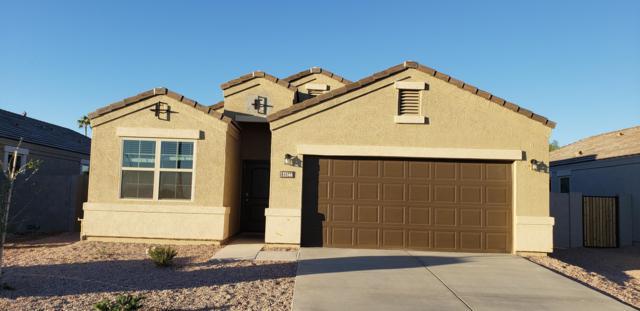 25616 W Allen Street, Buckeye, AZ 85326 (MLS #5883224) :: The Results Group