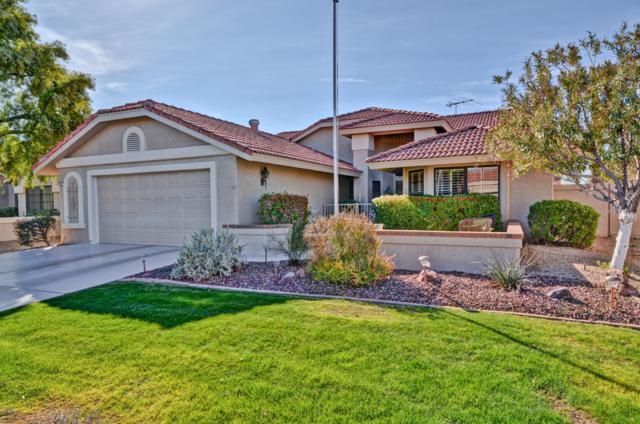 13315 W La Terraza Drive, Sun City West, AZ 85375 (MLS #5883230) :: CC & Co. Real Estate Team