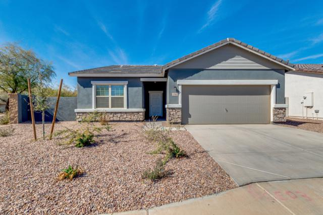 37002 W Nola Way, Maricopa, AZ 85138 (MLS #5883261) :: The Laughton Team