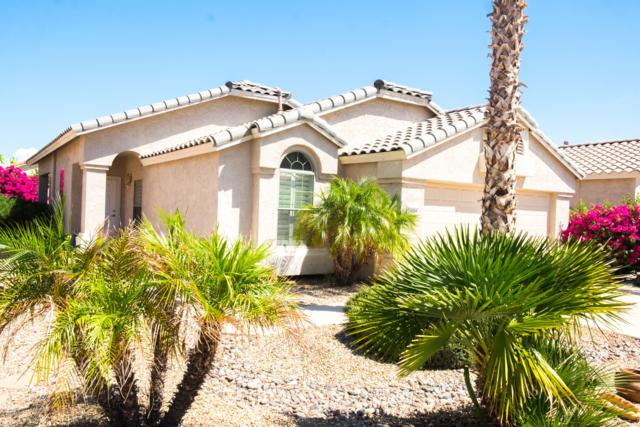 18066 W Addie Lane, Surprise, AZ 85374 (MLS #5883287) :: Yost Realty Group at RE/MAX Casa Grande
