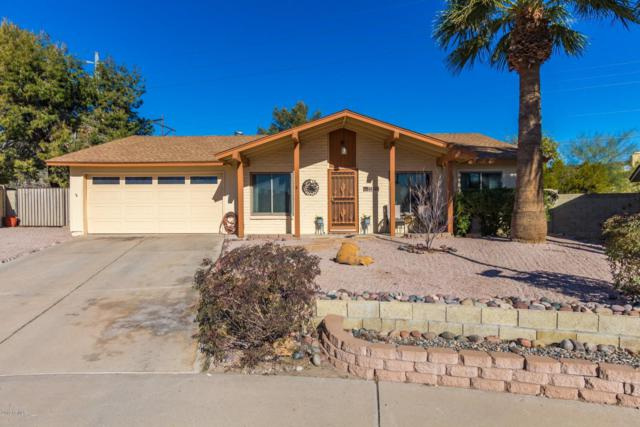 4020 E Jicarilla Street, Phoenix, AZ 85044 (MLS #5883305) :: Kepple Real Estate Group