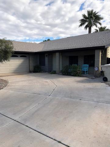 9047 N 48TH Avenue, Glendale, AZ 85302 (MLS #5883316) :: Yost Realty Group at RE/MAX Casa Grande