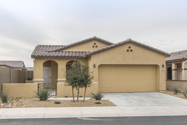 17873 W Silver Fox Way, Goodyear, AZ 85338 (MLS #5883381) :: Cindy & Co at My Home Group