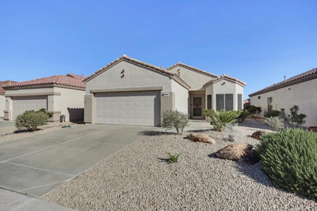 16244 W Montoya Drive, Surprise, AZ 85374 (MLS #5883385) :: The Laughton Team