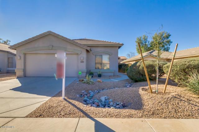 12521 W Woodland Avenue, Avondale, AZ 85323 (MLS #5883418) :: The Luna Team