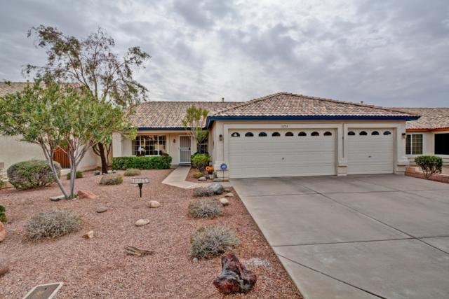 10755 W Tonopah Drive, Sun City, AZ 85373 (MLS #5883443) :: Devor Real Estate Associates