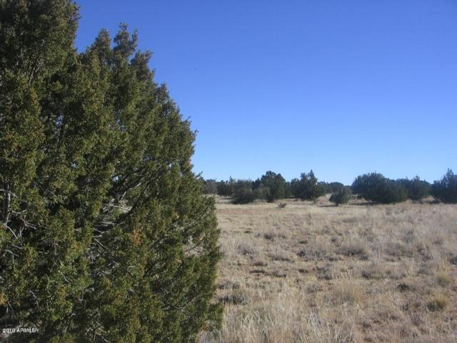 Lot 45 Chevelon Retreat #1, Heber, AZ 85928 (MLS #5883459) :: Lifestyle Partners Team