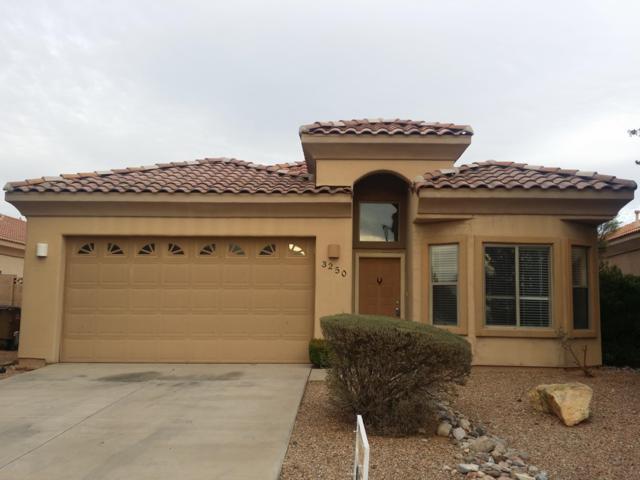 3250 N Camino Perilla, Douglas, AZ 85607 (MLS #5883477) :: The Laughton Team