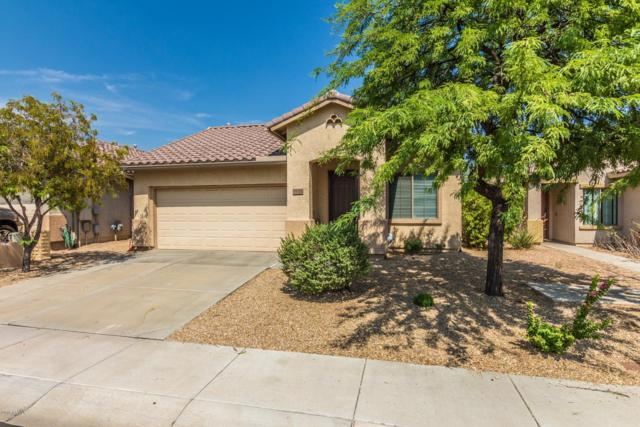 39525 N Harbour Town Way, Anthem, AZ 85086 (MLS #5883521) :: The Everest Team at My Home Group