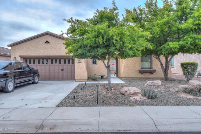12357 W Hedge Hog Place, Peoria, AZ 85383 (MLS #5883616) :: Cindy & Co at My Home Group