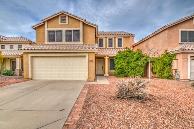 1630 W Gail Drive, Chandler, AZ 85224 (MLS #5883648) :: Yost Realty Group at RE/MAX Casa Grande