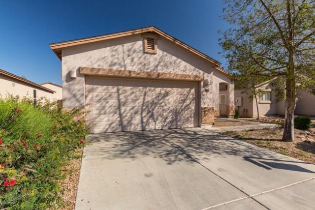 1736 E Desert Rose Trail, San Tan Valley, AZ 85143 (MLS #5883698) :: Yost Realty Group at RE/MAX Casa Grande