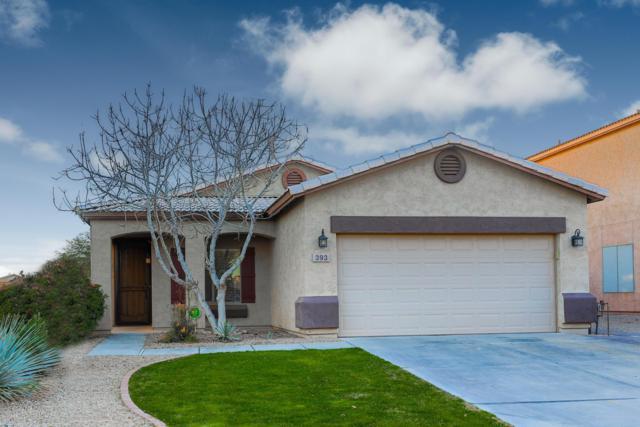 393 E Shawnee Road, San Tan Valley, AZ 85143 (MLS #5883732) :: Yost Realty Group at RE/MAX Casa Grande