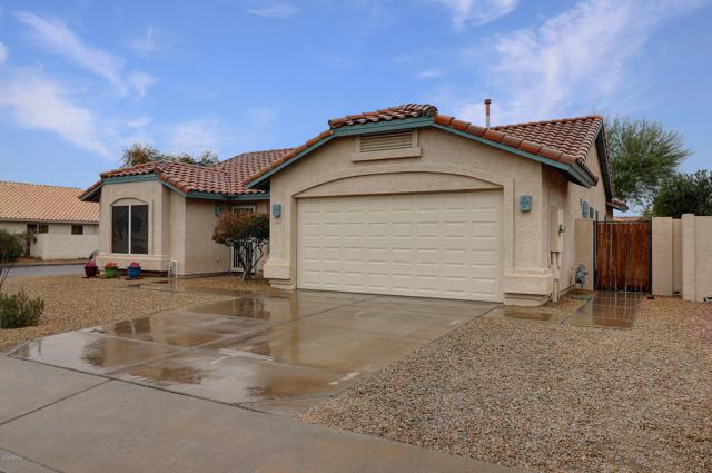 2616 N 123rd Avenue, Avondale, AZ 85392 (MLS #5883736) :: The Luna Team