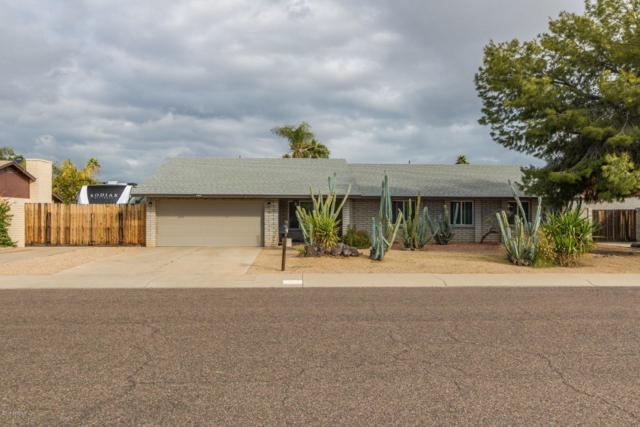 4516 E Pershing Avenue, Phoenix, AZ 85032 (MLS #5883741) :: Yost Realty Group at RE/MAX Casa Grande