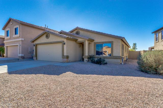 11323 E Wallflower Lane, Florence, AZ 85132 (MLS #5883750) :: Yost Realty Group at RE/MAX Casa Grande