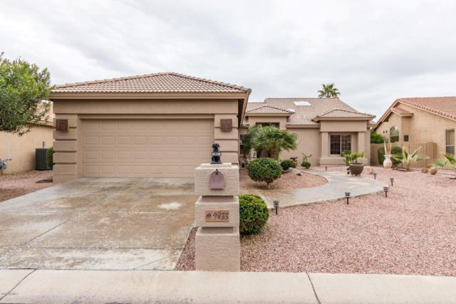 9833 E Crystal Drive, Sun Lakes, AZ 85248 (MLS #5883753) :: CC & Co. Real Estate Team