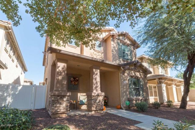 1353 S Joshua Tree Lane, Gilbert, AZ 85296 (MLS #5883770) :: The Laughton Team