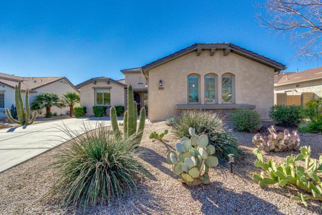 663 W Bismark Street, San Tan Valley, AZ 85143 (MLS #5883775) :: The W Group