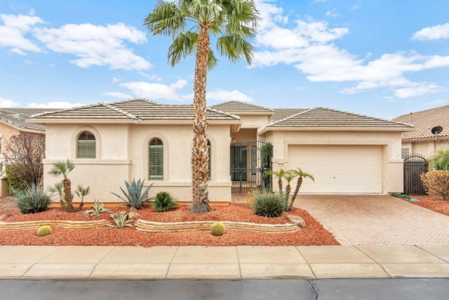 18187 W Stinson Drive, Surprise, AZ 85374 (MLS #5883779) :: RE/MAX Excalibur