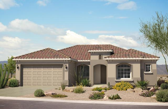 5673 W Cinder Brook Way, Florence, AZ 85132 (MLS #5883781) :: The Ford Team