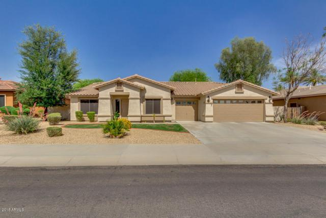 2801 N 144TH Drive, Goodyear, AZ 85395 (MLS #5883794) :: The Property Partners at eXp Realty
