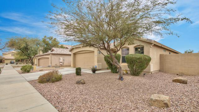2416 W Saint Kateri Drive, Phoenix, AZ 85041 (MLS #5883797) :: Yost Realty Group at RE/MAX Casa Grande