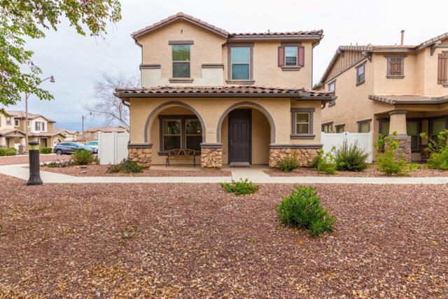 1395 S Joshua Tree Lane, Gilbert, AZ 85296 (MLS #5883804) :: Arizona 1 Real Estate Team