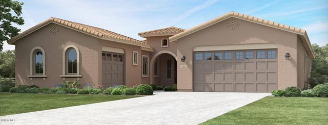 9746 E Thornbush Avenue, Mesa, AZ 85212 (MLS #5883812) :: Yost Realty Group at RE/MAX Casa Grande