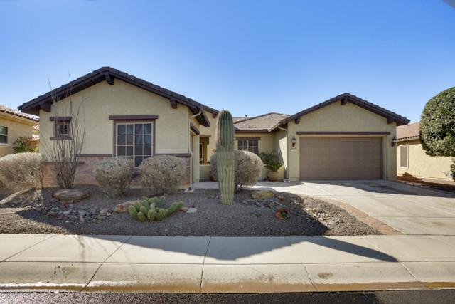 27019 W Burnett Road, Buckeye, AZ 85396 (MLS #5883835) :: The Results Group