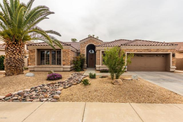7161 W Trails Drive, Glendale, AZ 85308 (MLS #5883842) :: Yost Realty Group at RE/MAX Casa Grande